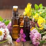 کارآموزی-اسانسگیری-داروهای-گیاهی